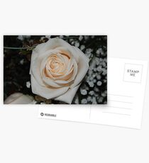 Rose, If you like, purchase, try a cell phone cover thanks Postcards