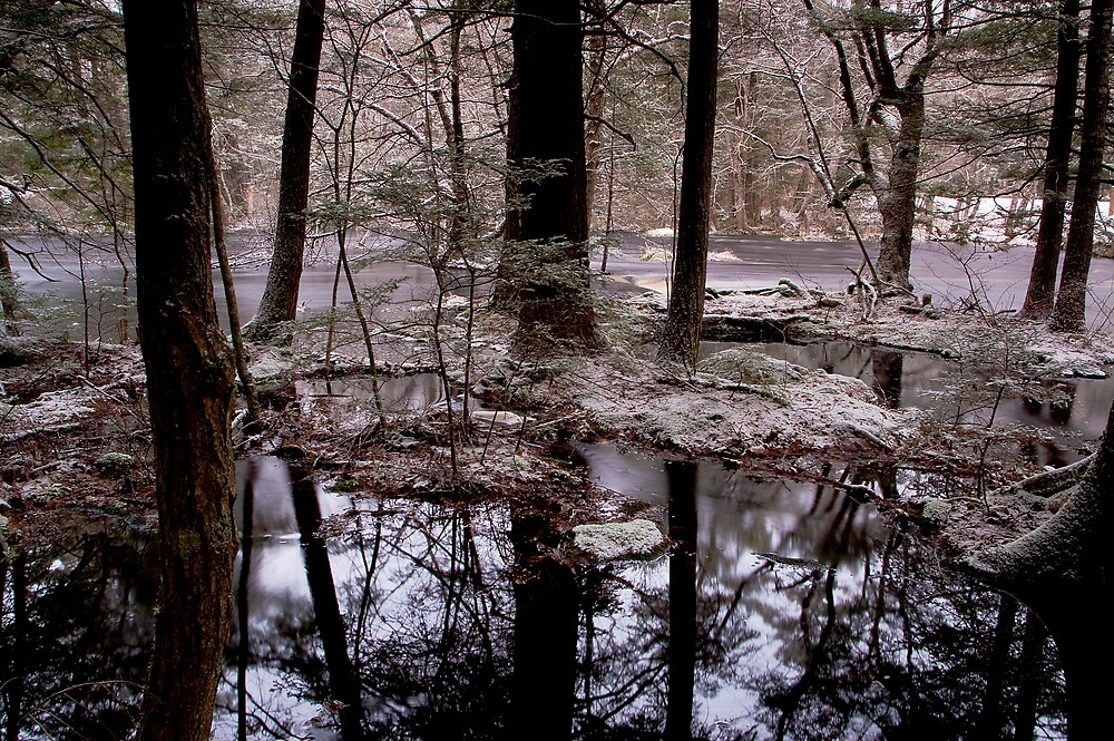 South Brookfield Reflections by Sandy  McClearn