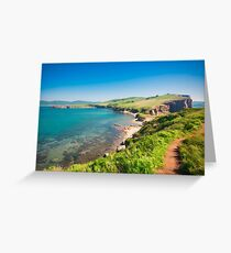 Wild Lovely bay and seacoast of the Pacific Ocean Greeting Card