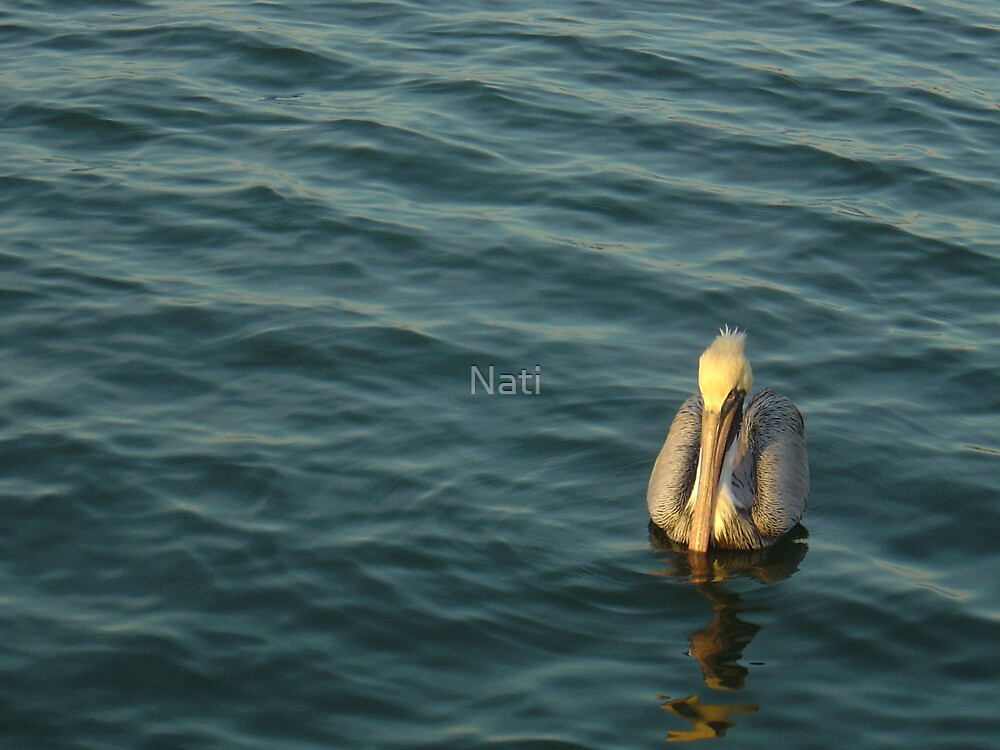 Floater by Nati