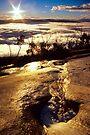 Cascade Dawn by Travis Easton