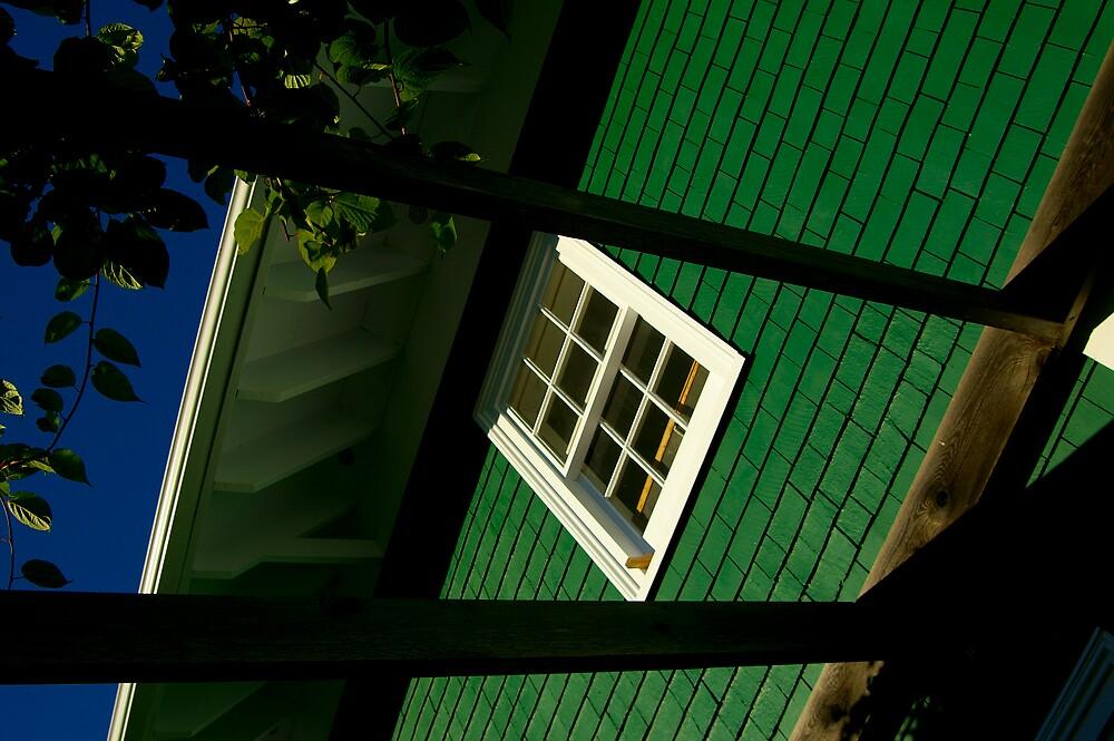 The Window by Sandy  McClearn