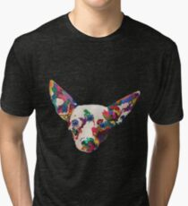 Enlightened Companion Tri-blend T-Shirt