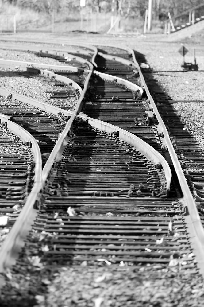 Train Rails by Sandy  McClearn