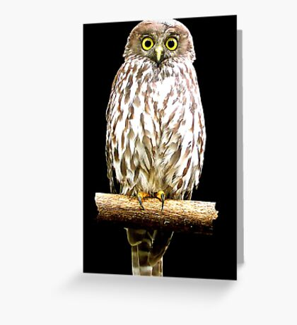 Who? Greeting Card