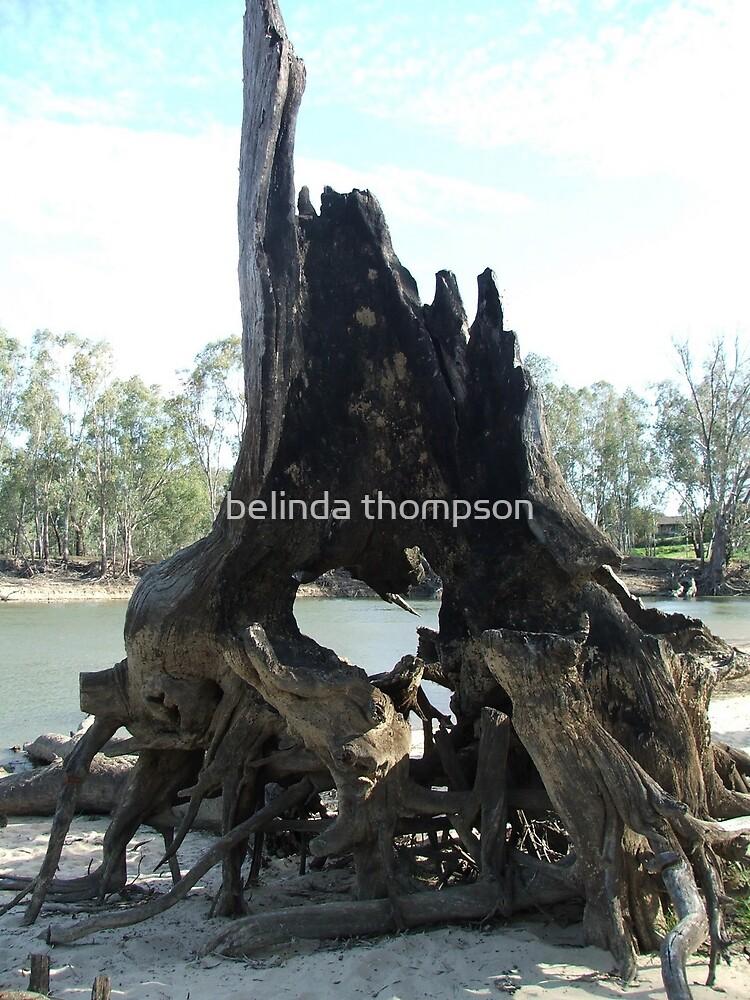 ghost tree by belinda thompson