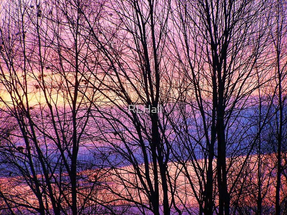 Winter Sunset by RLHall