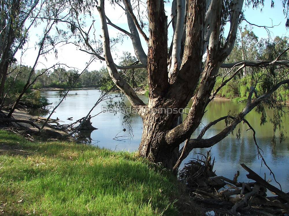 murray river front by belinda thompson
