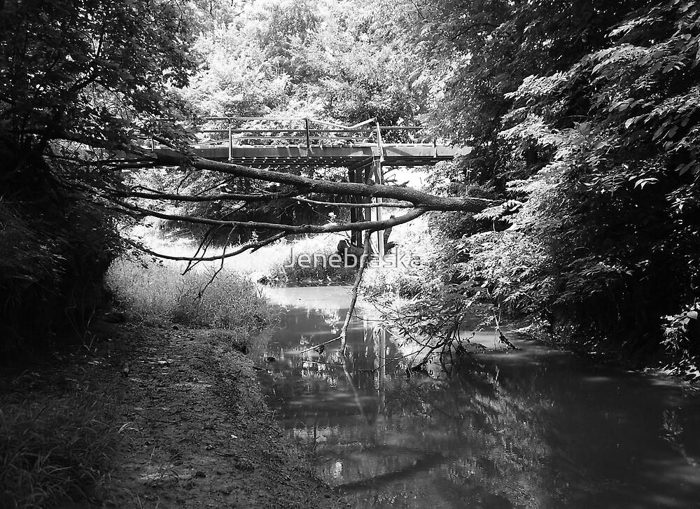 MockingBird Bridge by Jenebraska