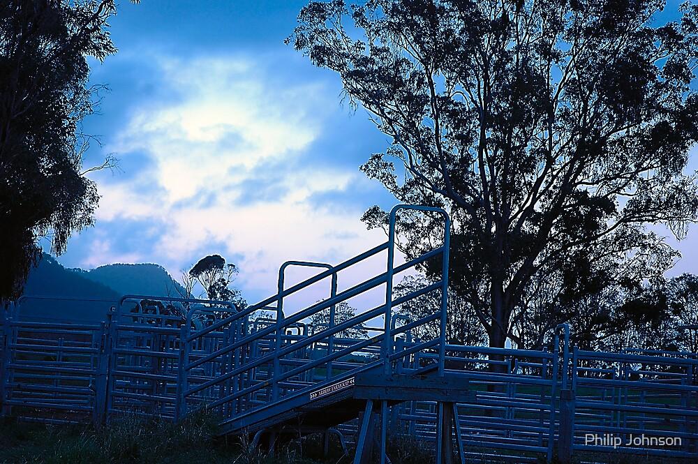 Drovers Run - Hunter Valley NSW Australia by Philip Johnson
