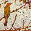 Remember the Song Birds? 5 by Karyn Fendley
