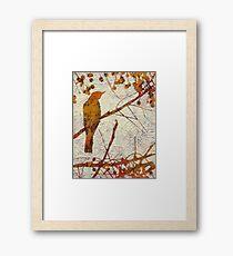 Remember the Song Birds? 5 Framed Print