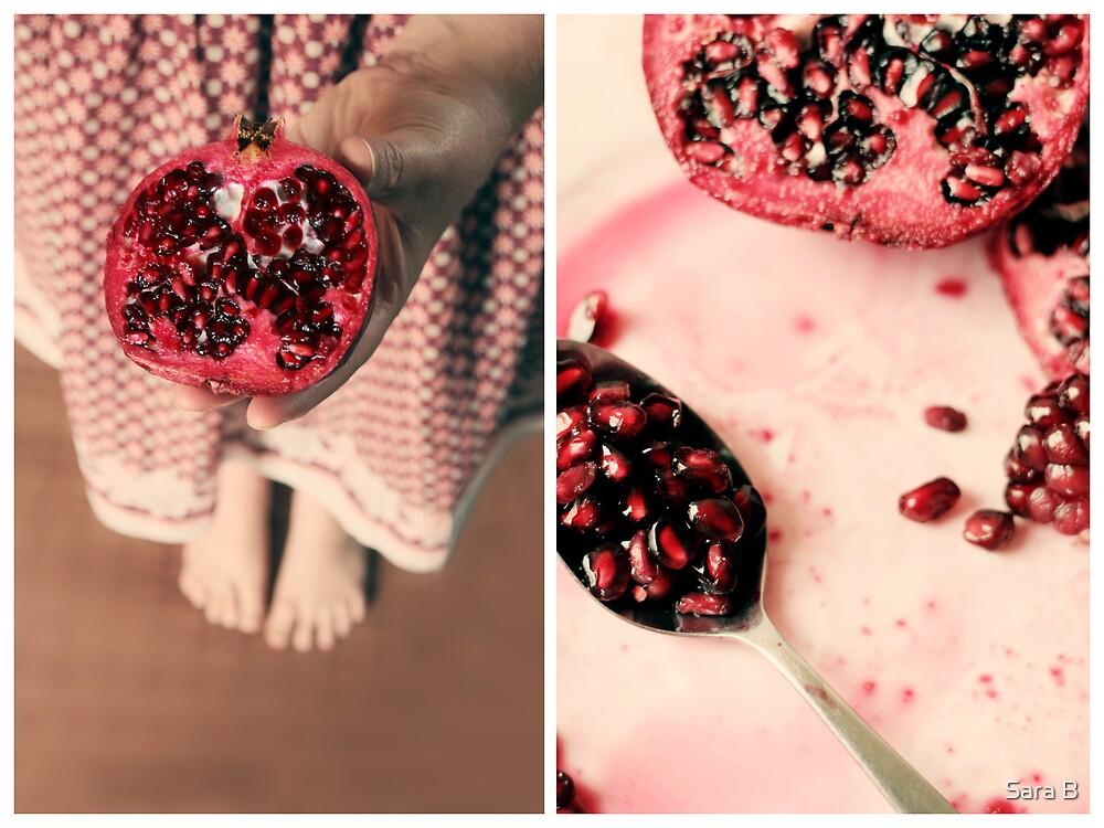 pomegranate 2 by Sara B