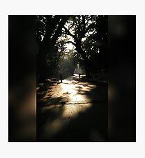 Mornings Photographic Print