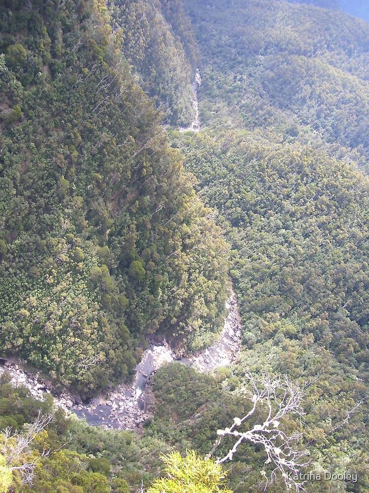 very high up by Katrina Dooley