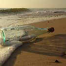 message in a bottle - 2 by srphotos