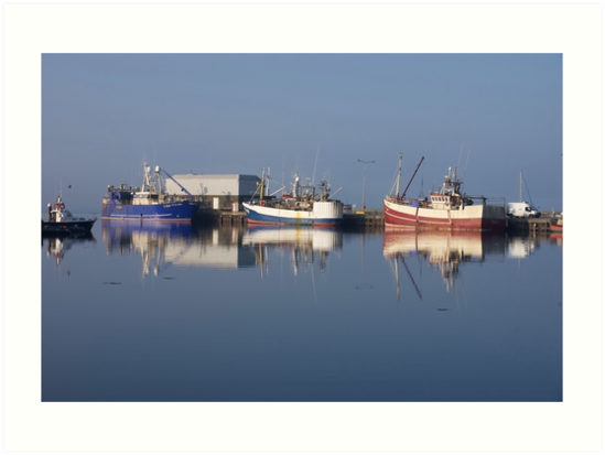 Reflections in Dingle Harbour, Ireland by Sue Frank