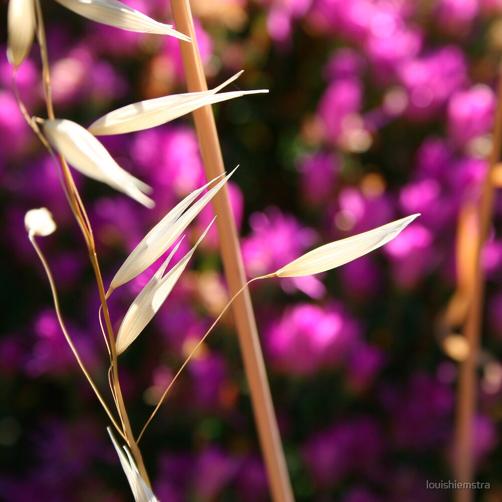 Floral Squares Purple by louishiemstra