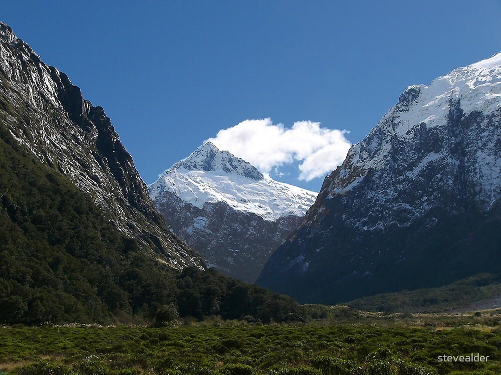 Mt Cook, New Zealand by stevealder