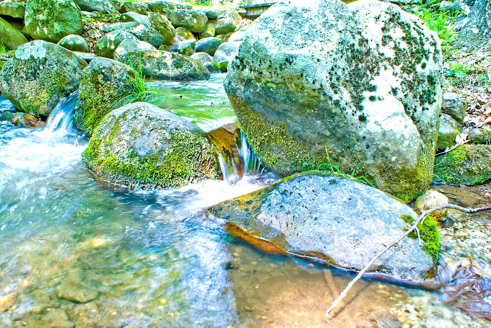 On The Creek Series #4 by Rod  Adams