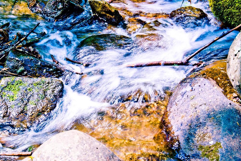 On The Creek Series #5 by Rod  Adams