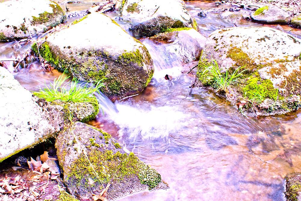 On The Creek Series #6 by Rod  Adams