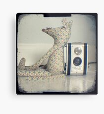 Mouse and camera Metal Print