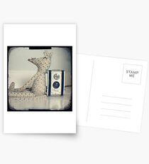 Mouse and camera Postcards
