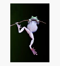 Acrobat Photographic Print