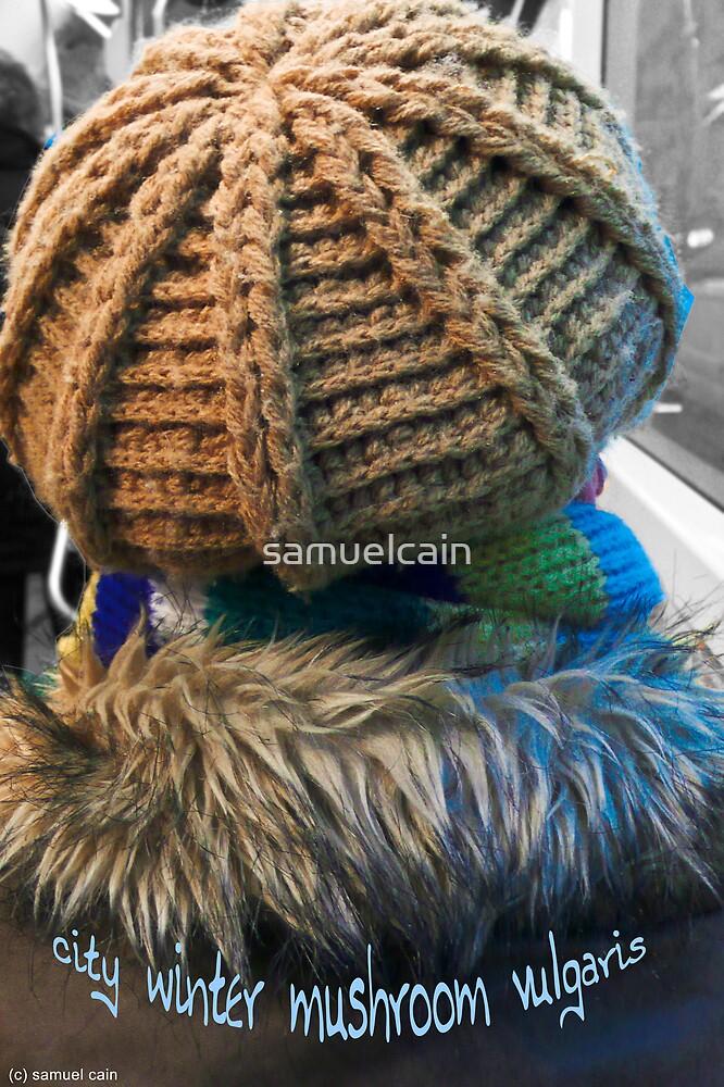 City Winter Mushroom by samuelcain