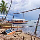 Boatyard at Cajaiba, Bahia, Brazil by Sue Clamp