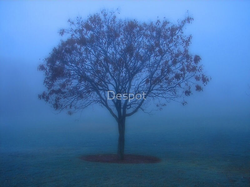 Blue Mood by Despot