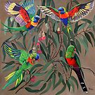 Birds from Paradise. Rosellas by Tatyana Binovskaya
