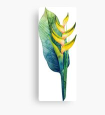 Watercolor heliconia bouquet Canvas Print