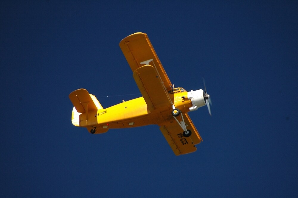 Big Yellow Taxi @ Evans Head Airport 2010 by muz2142