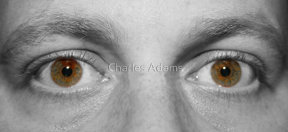 Allways Watching by Charles Adams