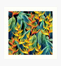 Watercolor heliconia Art Print