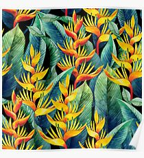 Watercolor heliconia Poster