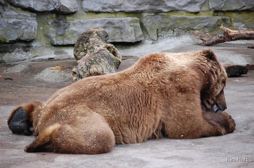 Now I lay me down to sleep... by Kim Hart
