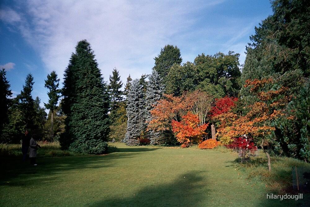 Autumn at Thorpe Perrow by hilarydougill