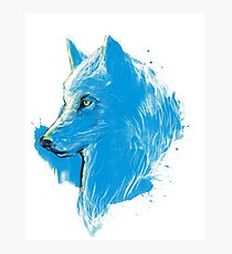 sumi wolf blue Photographic Print