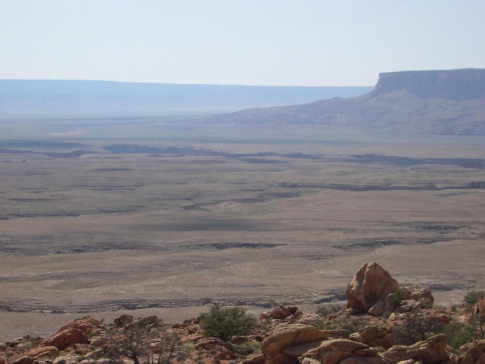 desert overlook by kdonka