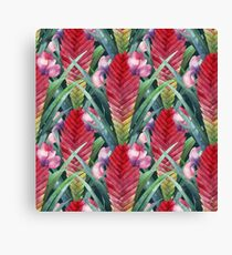 Watercolor tillandsia cyanea Canvas Print