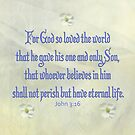 John 3:16 Dogwood by FrankieCat
