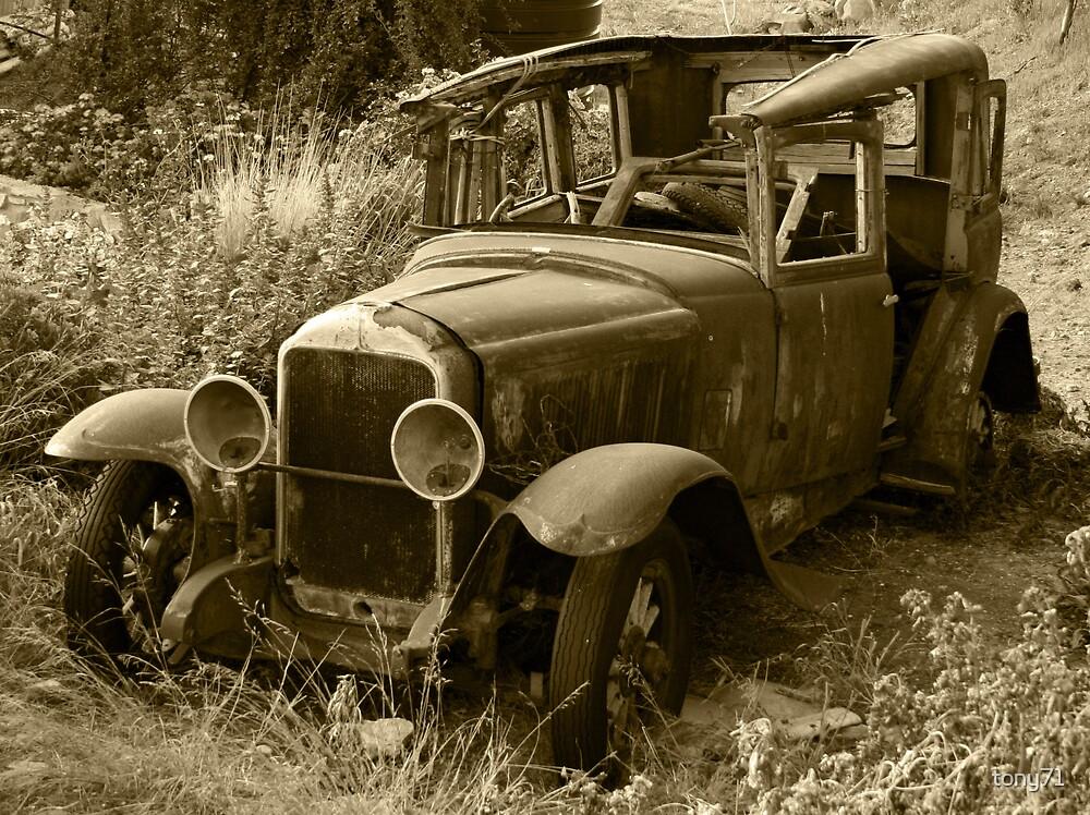 Sleeping Buick by tony71