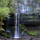 Russell Falls, Mt Field National Park, Tasmania by GeorgeOne