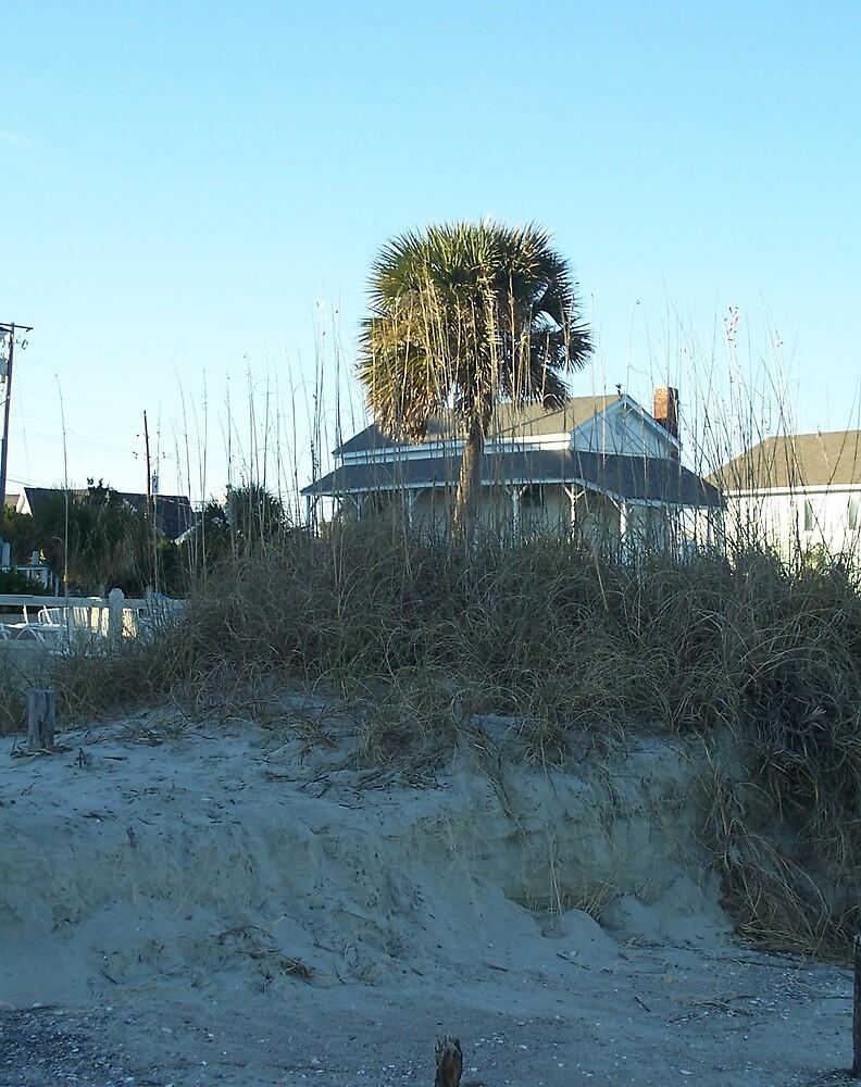 Dunes by sadeyedpoet