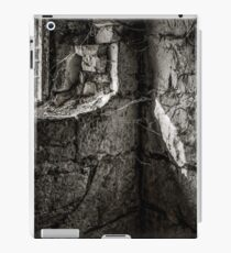 Foundation iPad Case/Skin