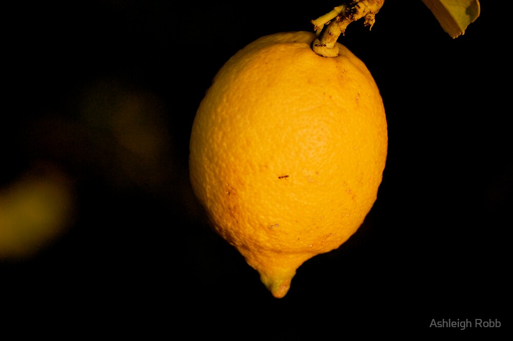 When Life Gives You Lemons by Ashleigh Robb