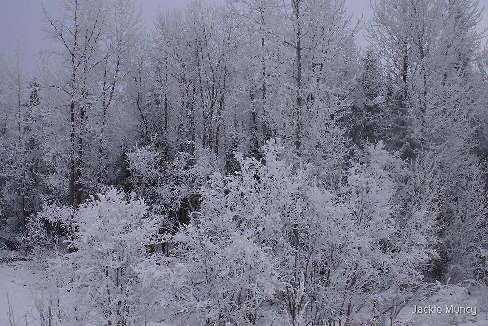 Ice Fog + Snow by Jackie Muncy